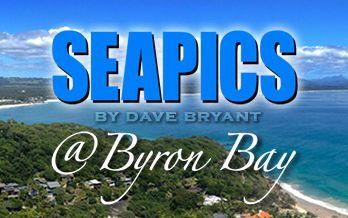 SeaPics-website_bground